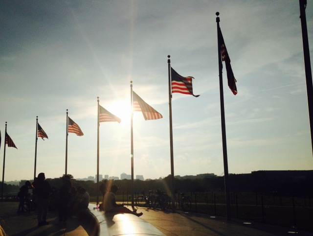 Flags in DC