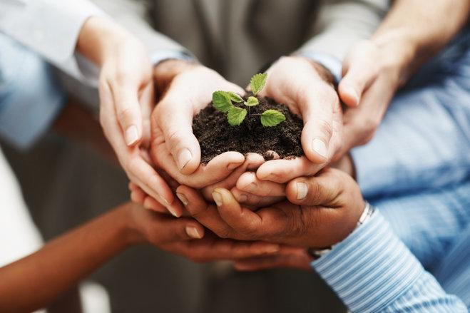 rsz_istock_hands_holding_seedling_in_a_group